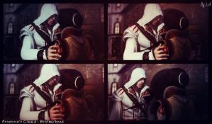 Assassin's Creed - Brotherhood () by LadyAnnett