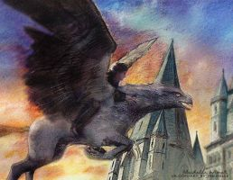Flying on a Hippogriff by Michelle-Winer