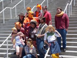 AX2014 - MLP Gathering: 29 by ARp-Photography
