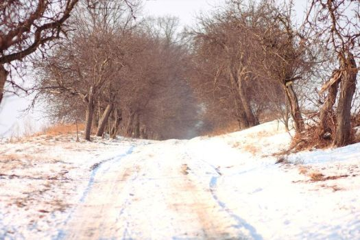 Winter 2012 - 28 by Eufrosis