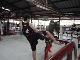 Muay Thai Round Kick by nightshade-keyblade