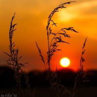 Square Crop of the Gorgeous Sunset shot. by DPSparhawk