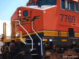 7769 Upclose by texasghost