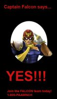 Captain Falcon wants YOU by ston123456789