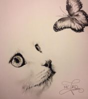 Chat Vs Papillon by JessicaDrawings