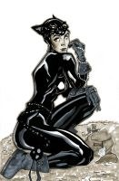 Catwoman Copic by dtor91