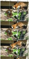 Tiger Jump - For Reference Purposes Only by leopatra-lionfur