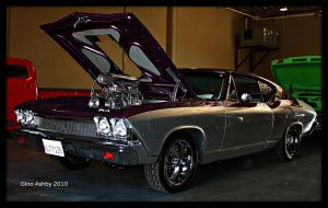 Glossy Chevelle by StallionDesigns