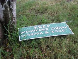 A green woodford by Armenius
