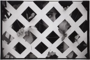 Identity Series Pt. 1: Caged by Amyellie