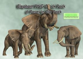 Elephant PNG Stock Pack by Roys-Art