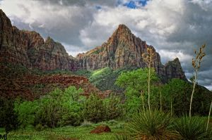 The Beauty of Zions by mjohanson