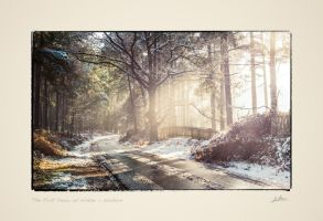 The First Snow of Winter by redtreeme