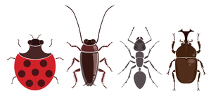 insects 1-4 by nawafiai