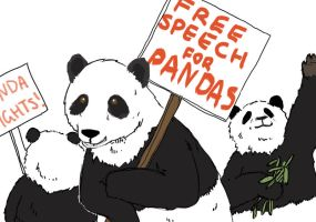 Free speech and Panda rights by scilk