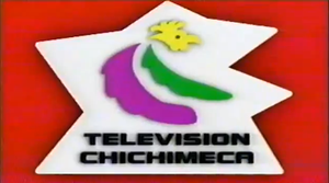 Television Chichimeca by 3D4D