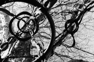 Tire Tree by PhotonicBohemian