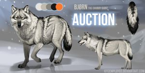 Chubby white wolf AUCTION -CLOSED- by KFCemployee