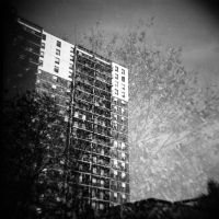 Tree and Building by x-escapevelocity-x