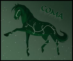Coma by Wild-Hearts