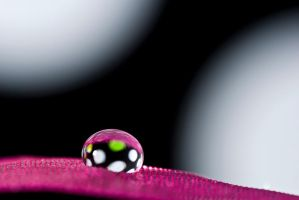 Polkadot droplet by pqphotography