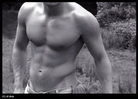 Torso in the sun by holdmycoat