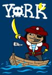 YORK - Capt Pirate by paldipaldi