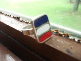 France Ring by Picklemind
