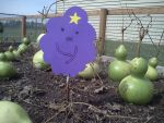My LSP garden by Abbygotswagga