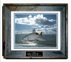 Sharkey Memorial by Gzip16