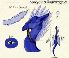 Draconis domesticus by Xan-Salstone