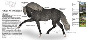 Aiukli Warmblood Breed Sheet by fulociraptor