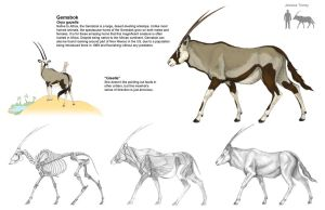 Final Gemsbok by Brokenfangs