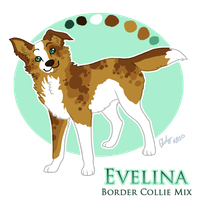 Evelina Reference Sheet by Aelyaniara