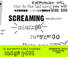 Paramore text brushes_imgpack by xhallelujahx