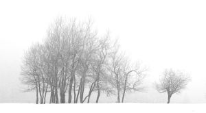 Outsider by one-shot-below