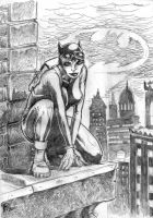 Catwoman by MouseCityKola