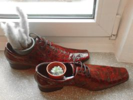 GO: Walk a mile in my shoes by cayra