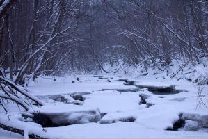 Wintry Ways by rici66