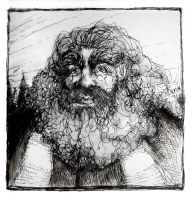 Hagrid by CanonFodder