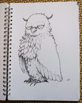Simple owl by Zxoqwikl
