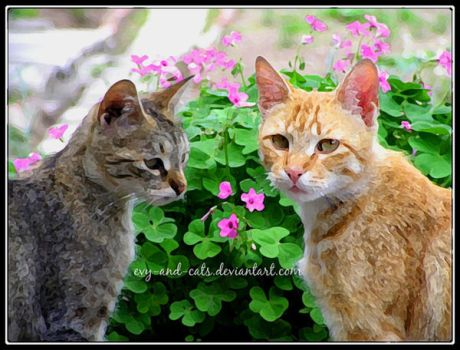 487 by evy-and-cats