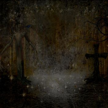 Dark Spooky Woods Bckground by mysticmorning