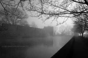 Tree Fogs On The Moat by EarthHart