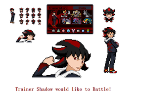 Trainer Shadow by 0RCV0