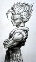 gogeta by TicoDrawing