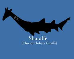 Sharaffe by chedoy