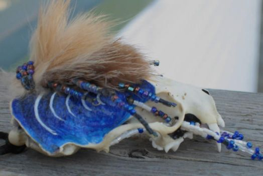 Painted Mink Skull by coyotlprole