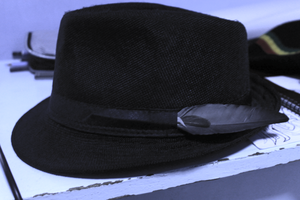 Feather(s) on a Fedora by chromatech