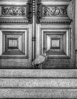 Locked Out by AgilePhotography